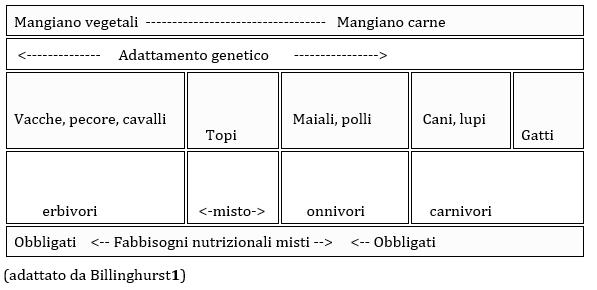 tabella Billinguist
