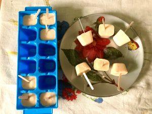 piccoli gelati per cani alla frutta su un piatto decorato con dalia rossa. Accanto uno stampo per cubetti di gelato, color azzurro